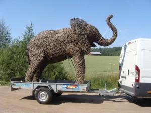 norsu matkalla Kettulaan