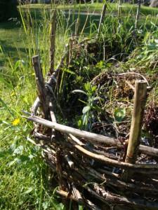 vanha kompostikehikko